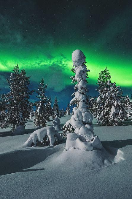 vividessentials:  Polar Night   vividessentials