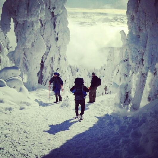 Free Snowshoeing Trails Near Vancouver