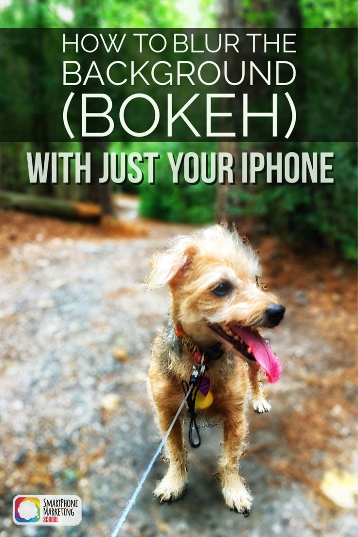 Learn how to use the AfterFocus app to get gorgeous blurred background or bokeh…