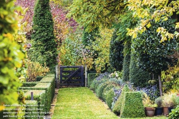 Janet Blair's country garden near Queenstown, New Zealand's South Island