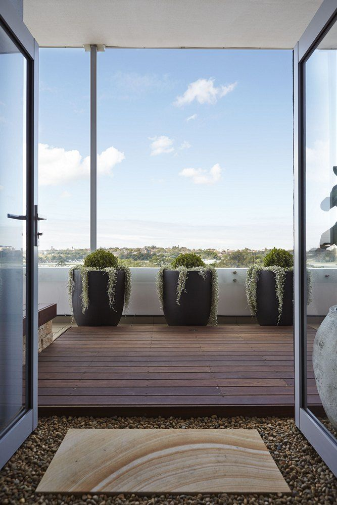 11 best manly low maintenance balcony images on for Courtyard landscaping sydney