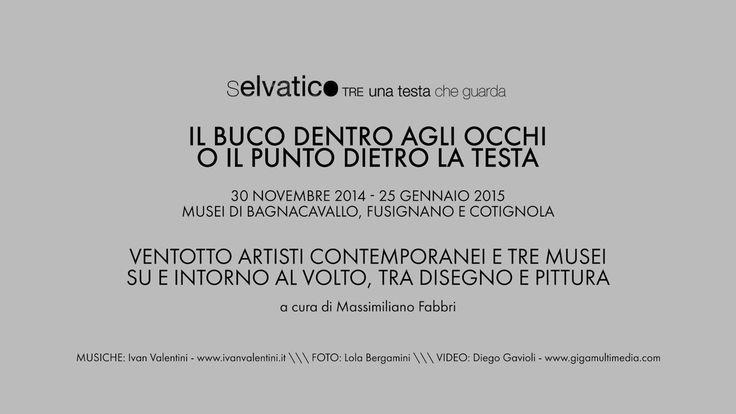 """Video di Diego Gavioli per """"Il buco dentro agli occhi o il punto dietro la testa"""" mostra su tre sedi e musei del progetto Selvatico.Tre/Una testa che guarda"""