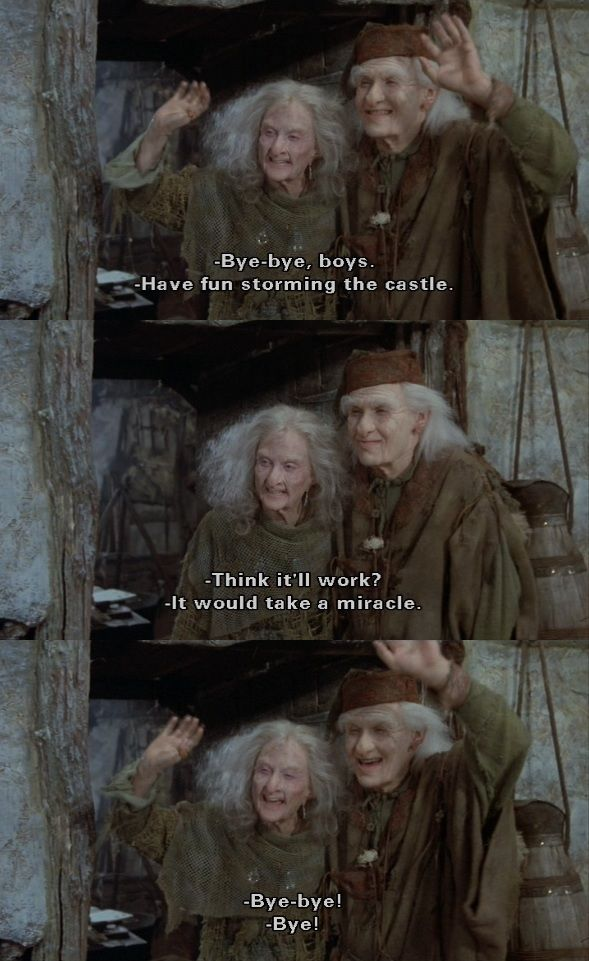 """Have fun storming the castle!"" (The Princess Bride)"