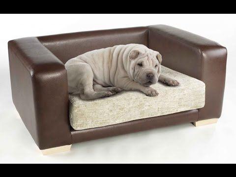 Dog Sofa Beds Ideas