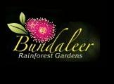 Bundaleer Rainforest Gardens - Ceremony & Reception