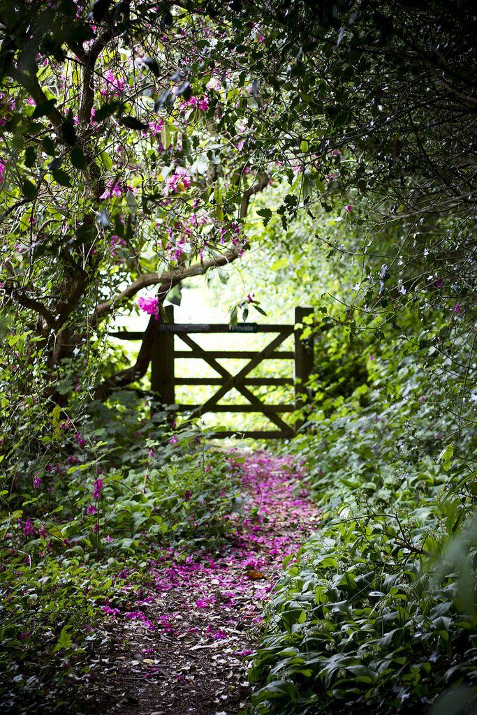 """silvaris: """" Chartwell Gardens by missgen """""""