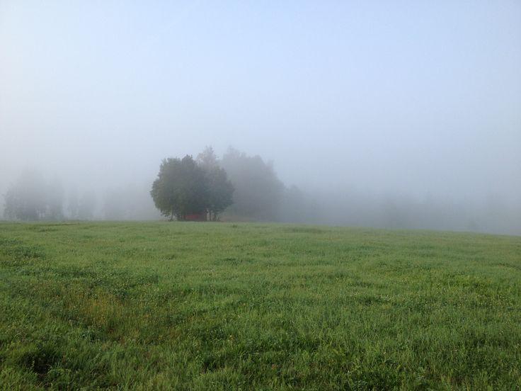 Morning, Hagreda
