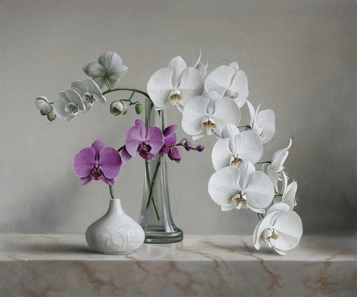 Painting - Pieter Wagemans - White Phalaenopsis