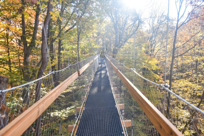 Not many people are aware that Ohio is home to an incredible canopy walk. It's a breathtakingly beautiful experience—unless you're absolutely terrified of heights, that is. The Judith and Maynard H. Murch Canopy Walk at Holden Arboretum in Kirtland, Ohio features a 500 ft. long elevated walkway suspended 65 ft. above the forest floor.
