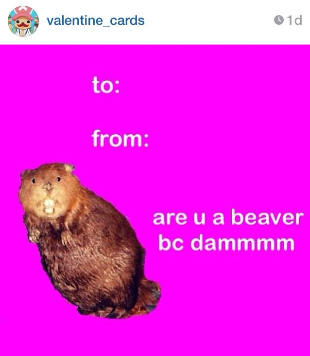 This Instagram account is hilarious valentinecards funny