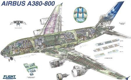 Airbus A380 800 Cutaway Aircraft Cutaway Drawings