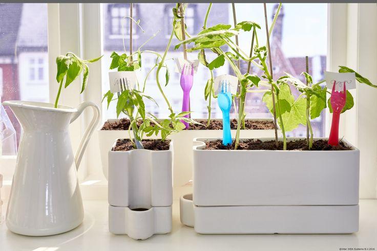 Ghivecele SÖTCITRON au grijă de plantele tale atunci când tu nu ești acasă.