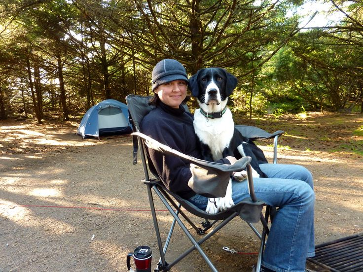Washington State Parks Are A Fantastic Option For Hiking And Camping With Dogs