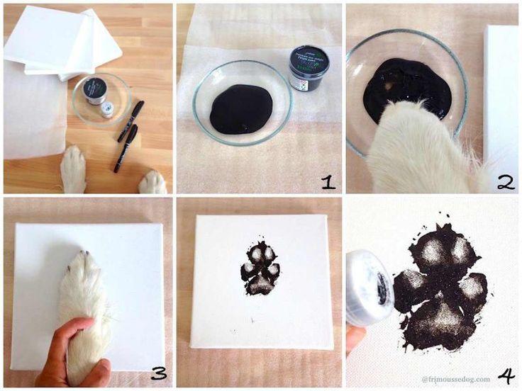 étapes empreintes chien frimousse dog