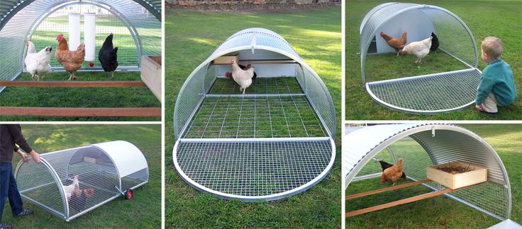 17 Best Images About Chicken Tractors On Pinterest