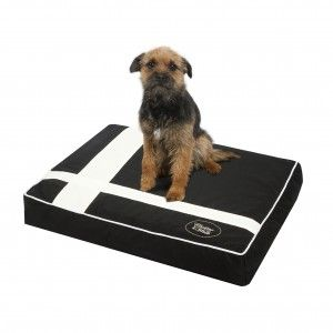 NEW - Chester & Wells Bristol Dog Cushion - Luxury Dog Beds : Chester & Wells Dog Beds