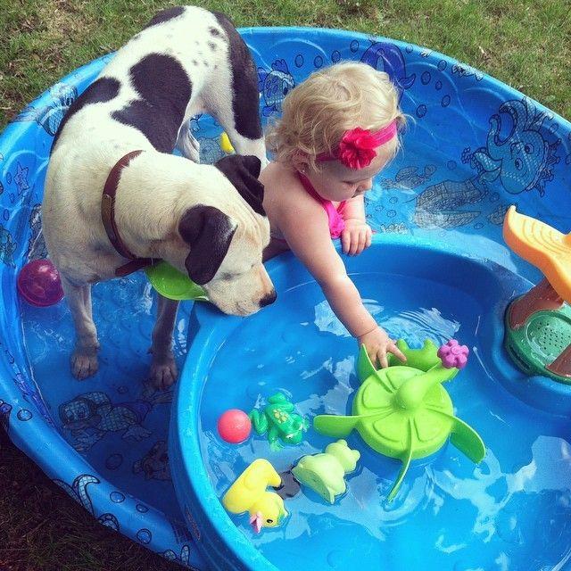 Eisleigh és Clyde a medencében is együtt játszanak  Pitbullok és gyerekek? - Hírek  #eisleighandclyde #pitbull #kutya #dog #baby #cute #kutyabaráthelyek #kutyabarathelyek