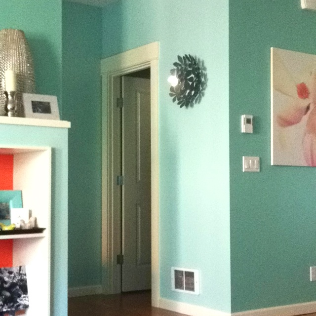 Olympic paint 'Pitter Patter' and Valspar 'La Fonda Mirage' and 'Spanish Dancer'. Bowl as wall art!
