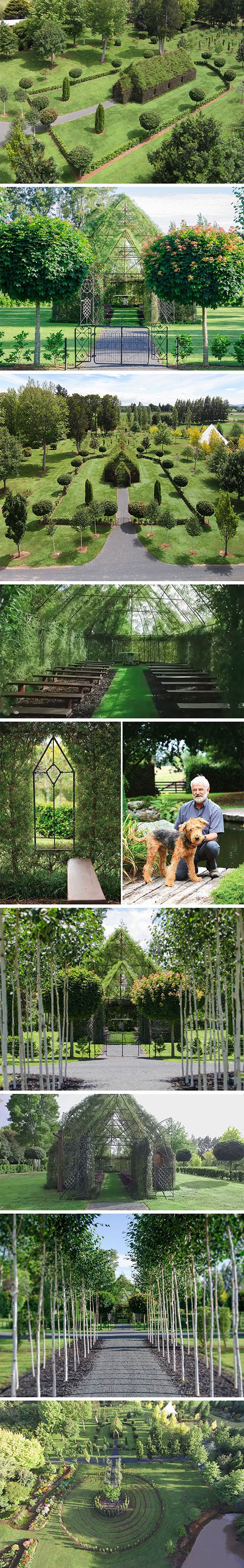 The enchantingly beautiful live-tree church in New Zealander Brian Cox's backyard is already impressive enough, but it's even more amazing when you learn that it took him only 4 years to create!