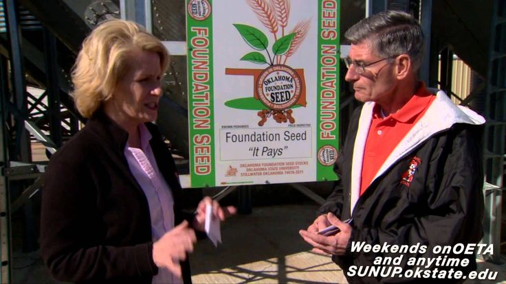 Kim Anderson foresees no movement of wheat prices in the near future.