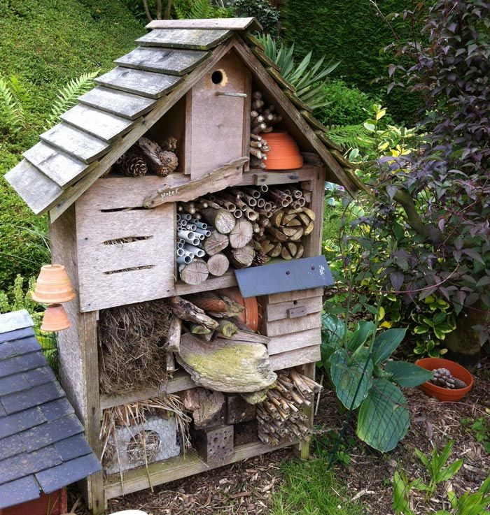 Photo-12   Hôtel à insectes, Hôtel, Insectes