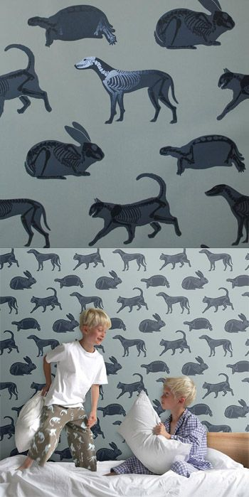 Skeleton Animal Wall Decals  Is your kid an aspiring nature goth?