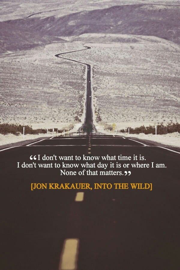 Into The Wild Book Quotes Impressive Best 25 Christopher Mccandless Quotes Ideas On Pinterest