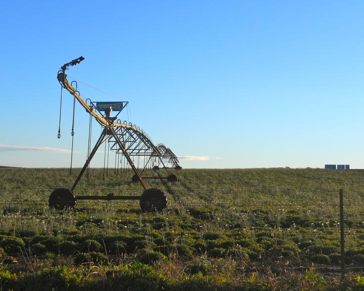 Farm watering equipment, near Forth.