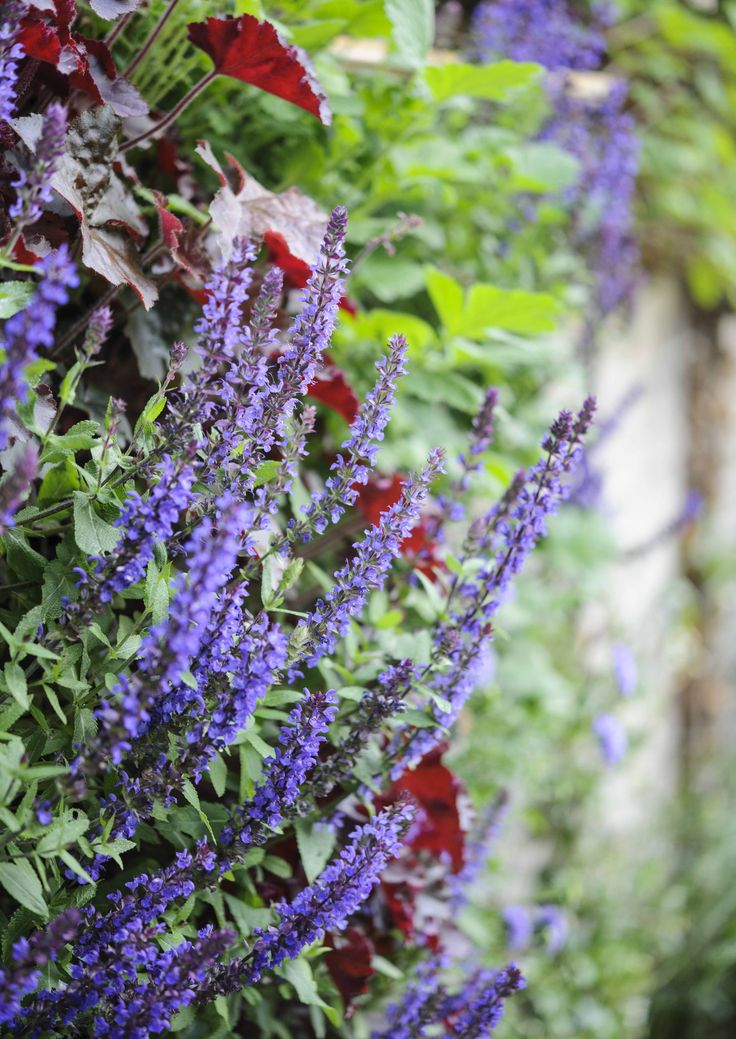 Garden Ideas And Outdoor Living 89 best outdoor living images on pinterest | outdoor living