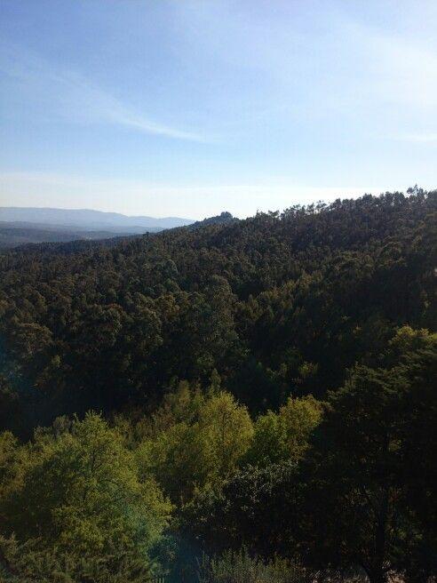 Castillo villasobroso - Mondariz vistas