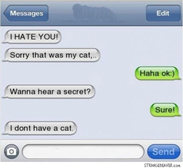 """I don't have a cat."" LOL, but i'd have to change the first line..."