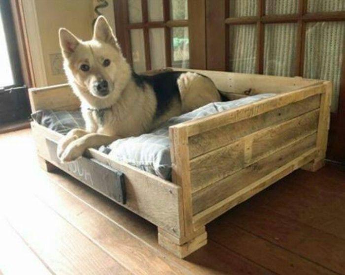 Уютные спальные места для домашних питомцев