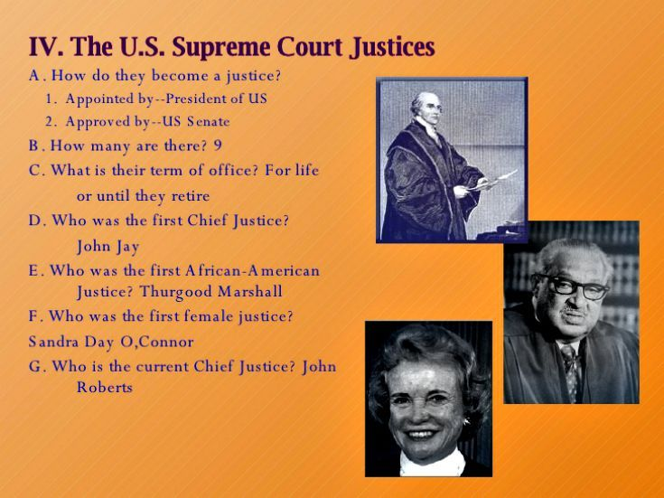 judicial branch of the american government 2009-2-27 us government  the judicial branch  the judicial branch is headed by the us supreme court,  what is the judicial branch (american bar association.