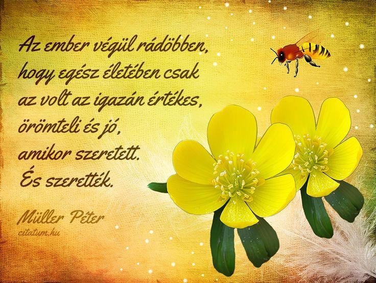 Müller Péter idézet a szeretetről.
