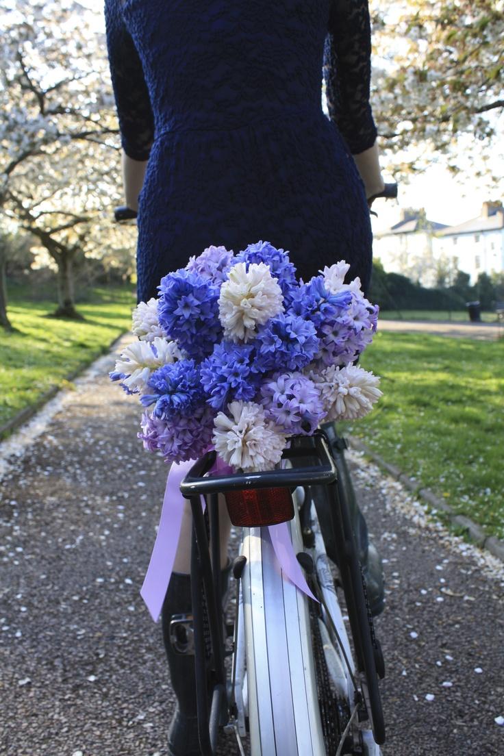 Hyacinth bouquet, beautiful.