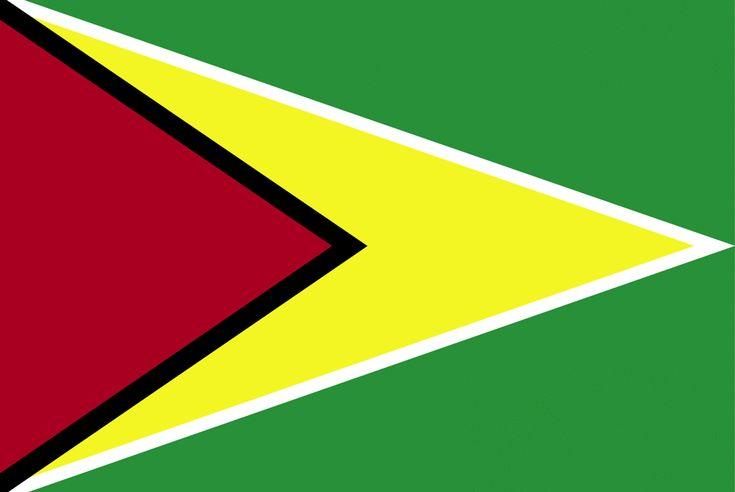 guyana. flag | Flag of Guyana, 2009