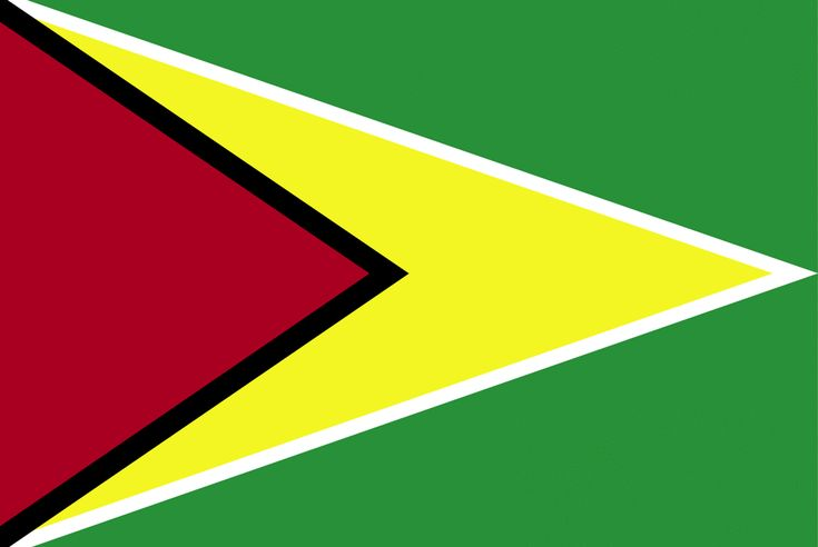 guyana. flag | Flag of Guyana, 2009