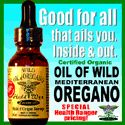 Why oil of oregano is a must-have for any survivalist, 'prepper' - NaturalNews.com