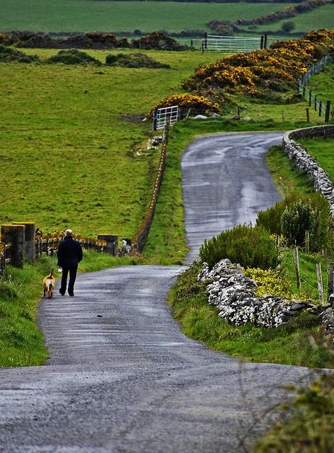 the long walk home by droptheneedlenpray, via Flickr