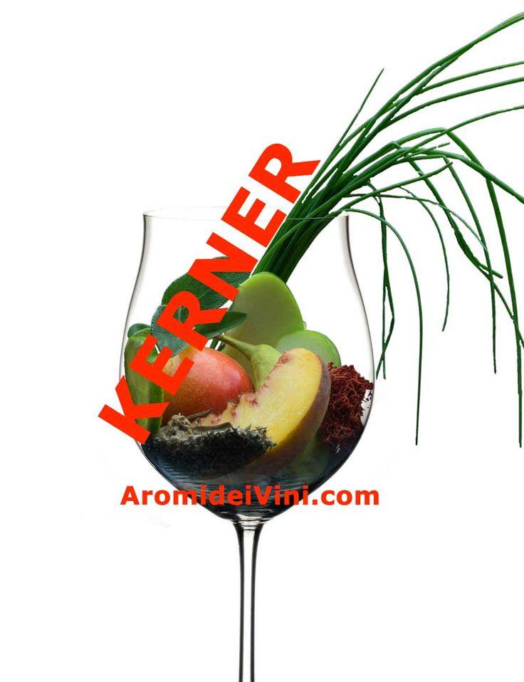 Kerner  Aromi dei vini - Wein Aromen - Aromideivini.com