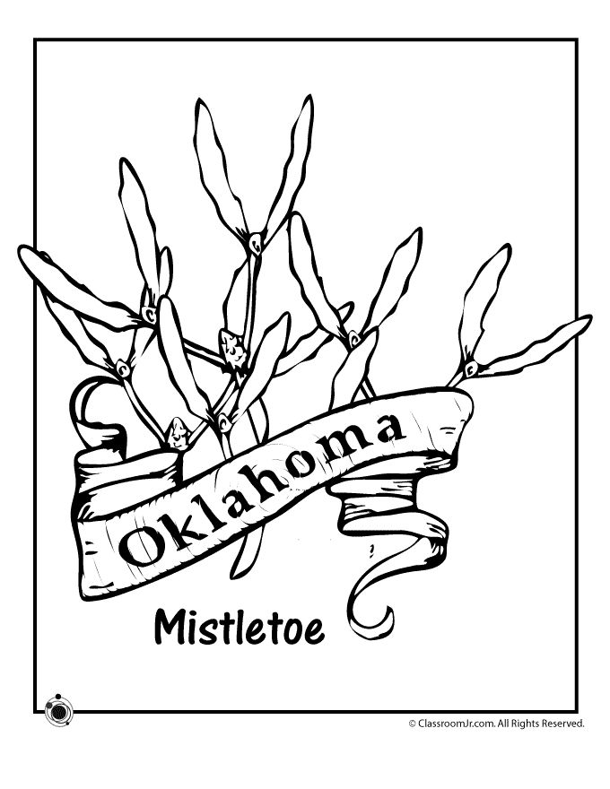 50 best State Flowers images on Pinterest Flower coloring pages