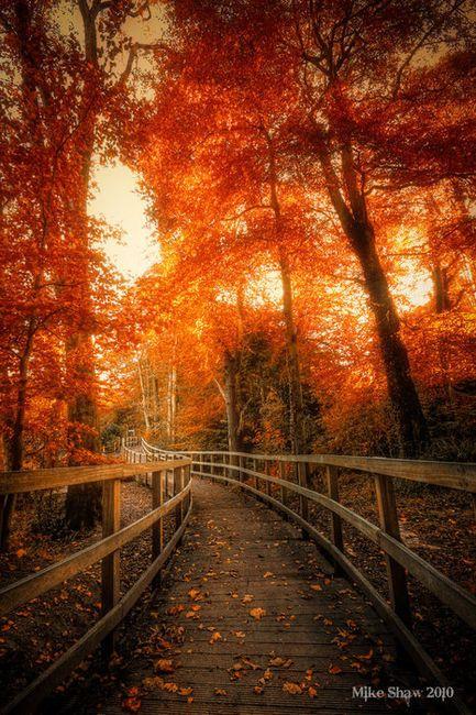 Beautiful fall weather.
