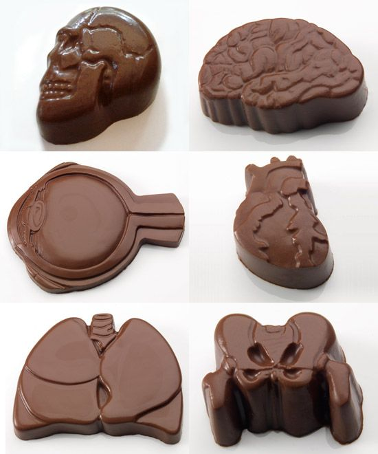 Anatomically Correct Chocolates | who killed bambi?