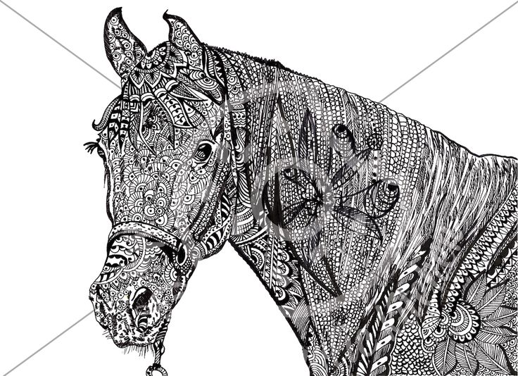 Fearless Fighter Horse | Free hand drawn zentangle wall art