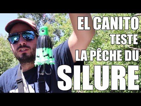 EL CANITO teste la pêche du SILURE !  #canito #peche #silure