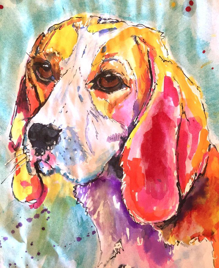 Hannah - beagle