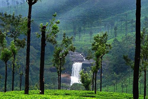 Hill Station Packages in valparai, hill station tour packages in valparai, tour packages hill stations in valparai, hill station holiday packages in valparai, hill station tour packages in valparai