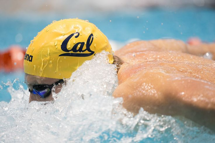 Everything You Need to Master the Mental Side of Swimming