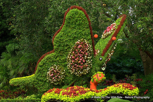 Whimsical topiaries needed- inquire within: Busch Gardens, Gardens Topiaries, Gardens Life, Begonia Butterflies, Gardens Art, Amazing Topiaries, Beautiful Gardens, Fantasy Gardens, Dreams Gardens