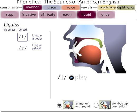 One of the best websites for teaching articulation, especially to adults or phonetics to students